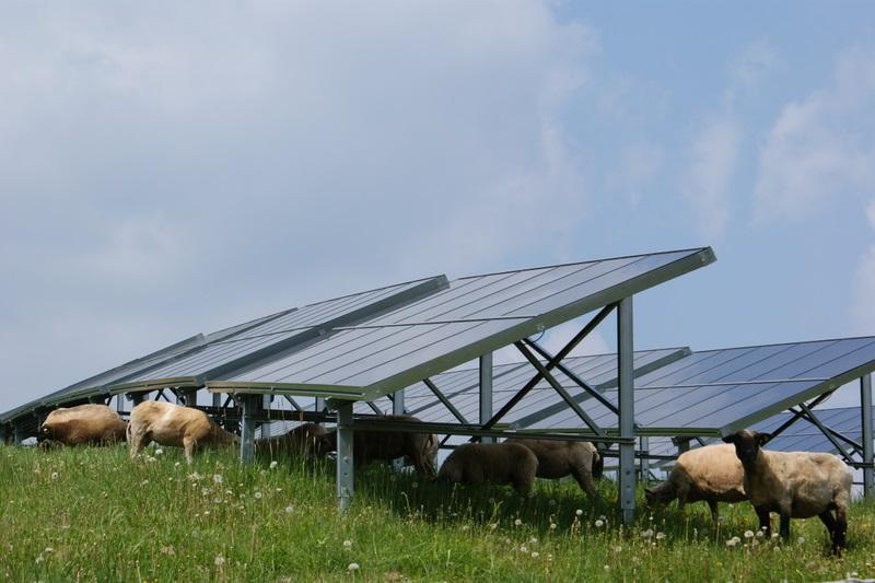 Photovoltaik Ebersberg